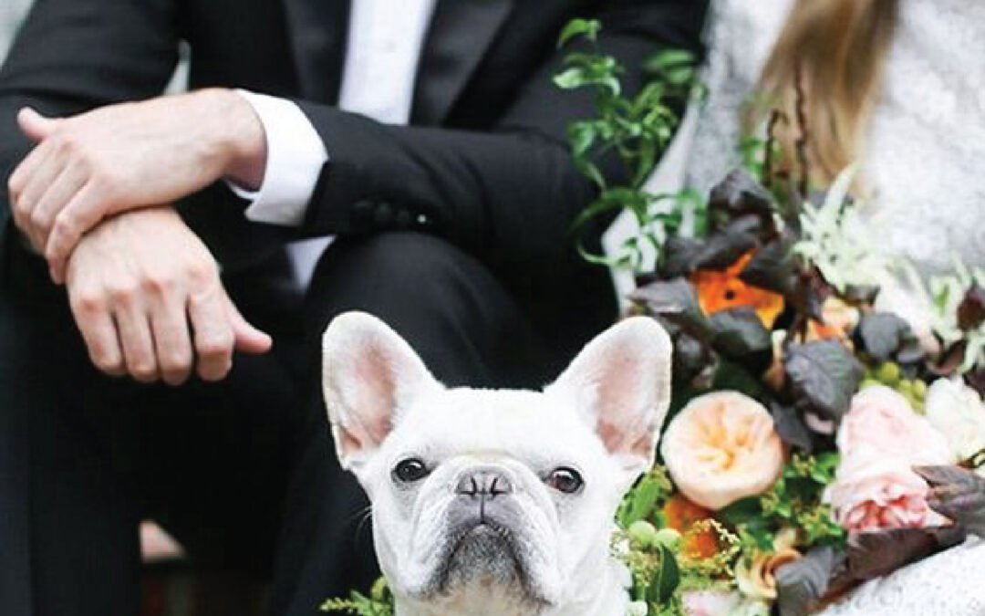Furry friends make the event much more memorable!